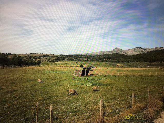 Aire camping-car à Espira-de-l'Agly (66600) - Photo 2